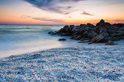 Shell Beach by Adam Pender