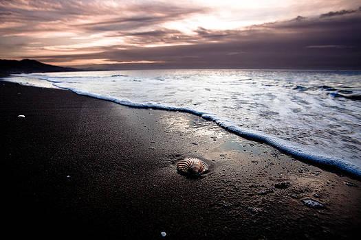 shell on the Spain beach by Mikhail Pankov