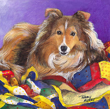 Sheltie on quilt by Terry Albert