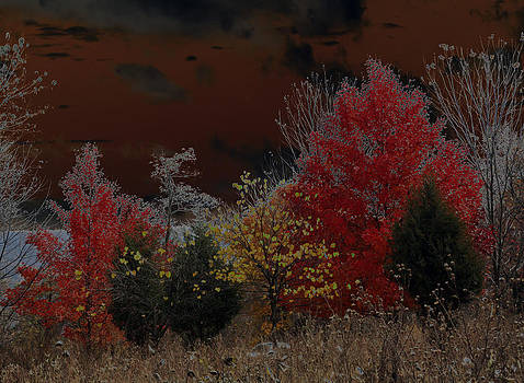 Carolyn Stagger Cokley - shenandoah autumn