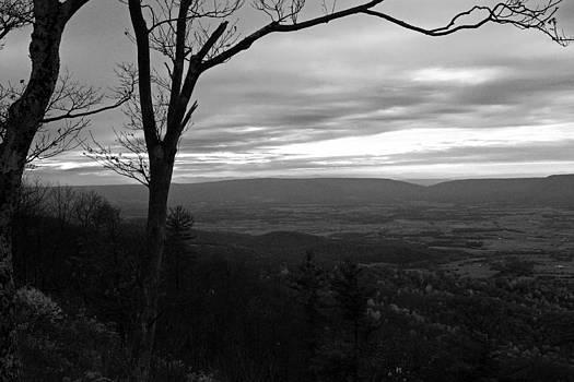 Carolyn Stagger Cokley - shenandoah hillside bw