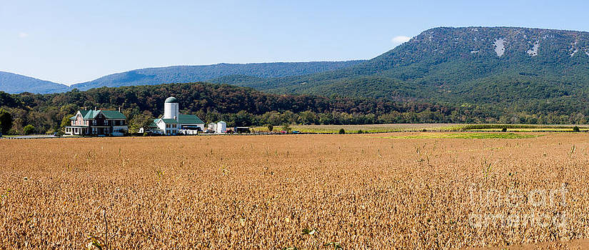 Shenandoah Valley Panorama by Thomas Marchessault