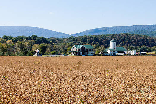 Shenandoah Valley Farmstead by Thomas Marchessault