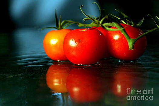 Sherry Tomatoes by Arie Arik Chen