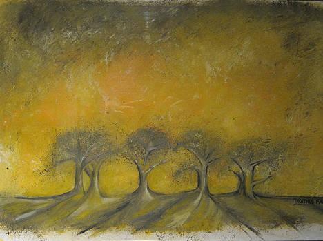 Sherwood by Thomas Falk