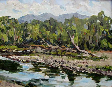 Shields River by Les Herman