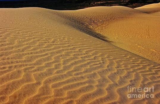 Shifting sands by Blair Stuart