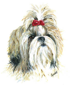 Shih Tzu Girl by Barb Capeletti