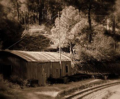 Shimla Rail Road by Salman Ravish