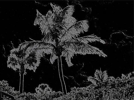Shimmering  Palms by Marilyn Holkham