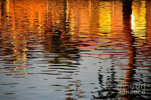 Shimmering Waters by Deb Halloran