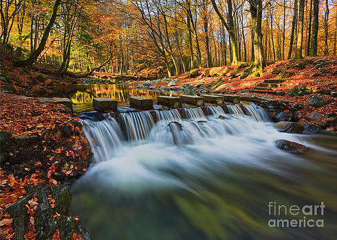 Shimna In Full Flow by Derek Smyth