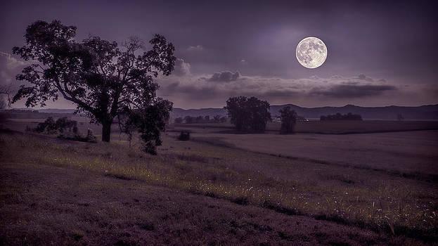 Shine On Harvest Moon by Jaki Miller