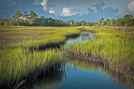 Shinn Creek Marsh by Phil Mancuso