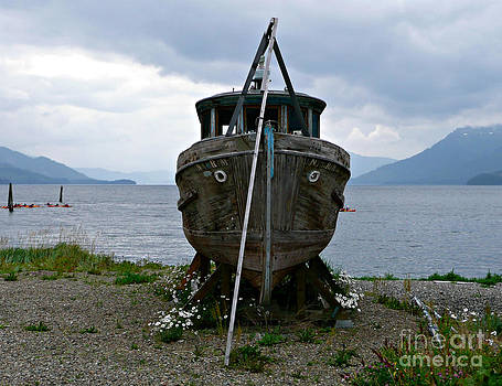 Rachel Gagne - Ship for Sale