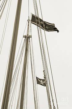 Kathi Shotwell - Ship