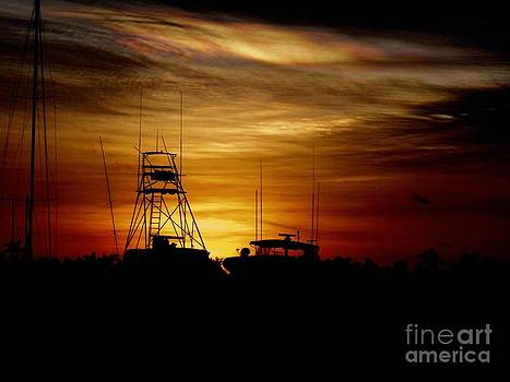 Ships in the Night by Debb Starr