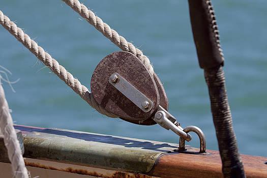 Michelle Wrighton - Ships Rigging II