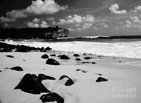 Shipwreck Beach by Tracey McQuain