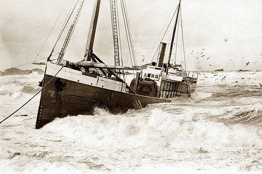 California Views Mr Pat Hathaway Archives - Shipwreck of Fifield Steam schooner Bandon Oregon February 21 1916