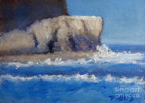Fred Wilson - Shipwreck Rock
