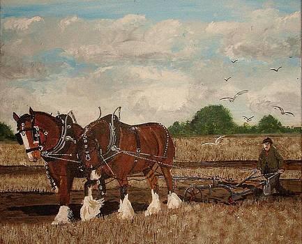 Shires by Harold Hopkinson