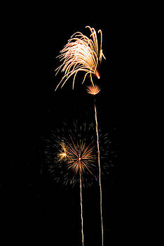 Devinder Sangha - Shooting stars