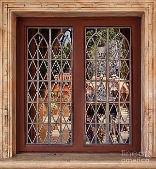 Shop Window by Nora Martinez