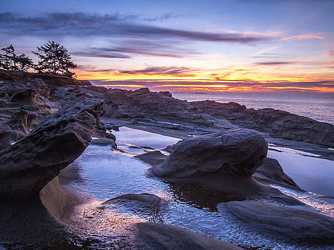 Shore Acres Sunset by Kristal Talbot