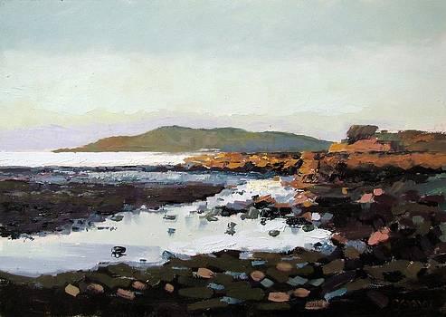 Shore evening by Robert Shaw