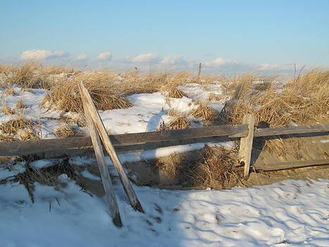Shore Fence Sun and Shadows by Loretta Pokorny
