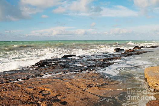 Shore of the Caspian Sea. by Alexandr  Malyshev