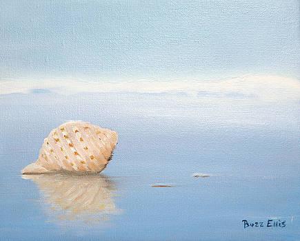 Shore Shell by John Ellis