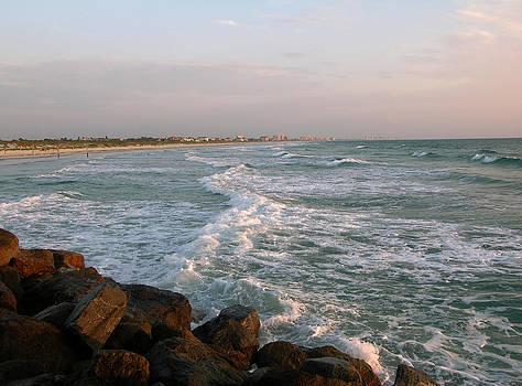 Shoreline at Ponce Inlet by Julianne Felton