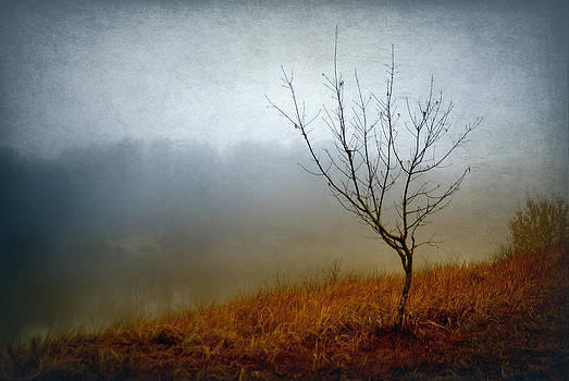 Shores in the mist by Vladimiras Nikonovas