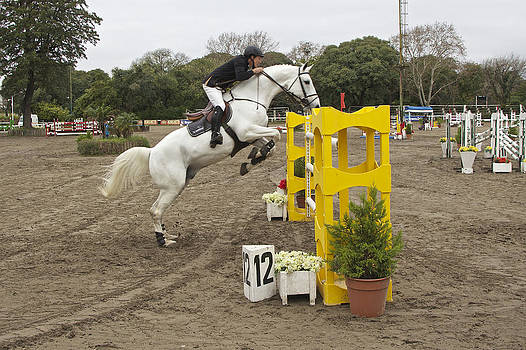 Venetia Featherstone-Witty - Show Jumping
