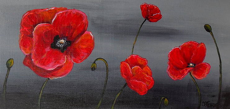 Show Off Poppies by Melissa Torres