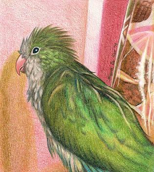 Shower Bird by Angela DeRiso