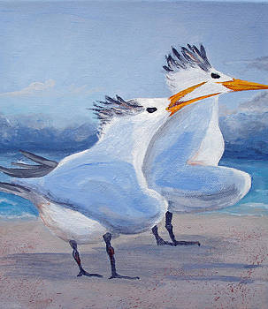 Shreeking Gulls 2 by Patricia Hooks