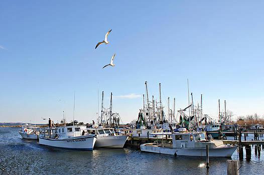 Shrimp Boats at Joe Patti's by Lynn Jordan