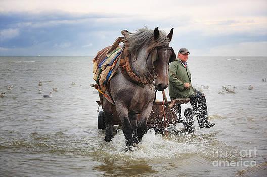 LHJB Photography - Shrimp Fishing