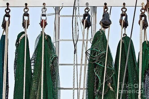 Scott Pellegrin - Shrimp Nets