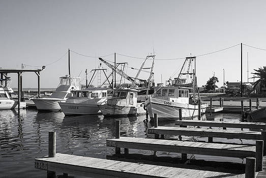 Shrimpers by Douglas Burrell