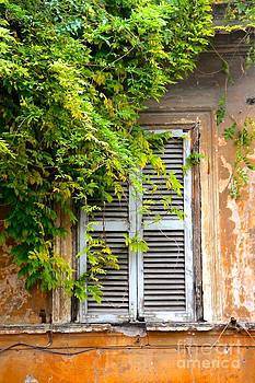 Shuttered Window in Rome by Julia Willard