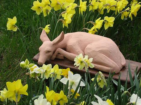Shy Fawn Hiding in the Daffodills by Deborah Dendler