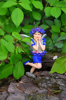 Shy Guy Woodland Fairies by Linda Rae Cuthbertson