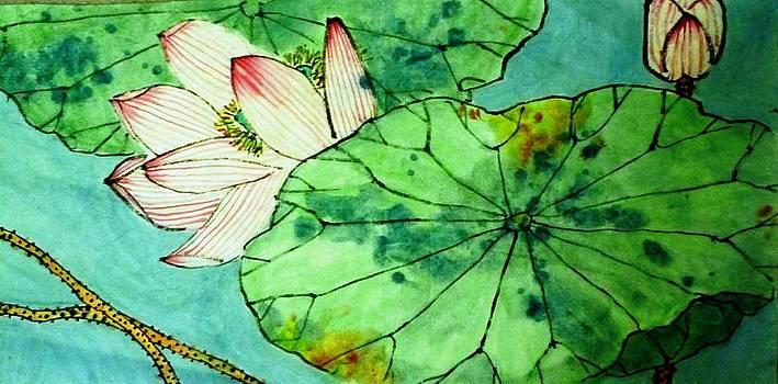 Betty M M   Wong - Shy Lotus flower