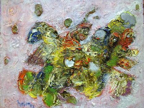 Shynphonie by Ahmed Mebarki