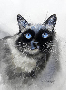 Siamese Cat by Hilda Vandergriff