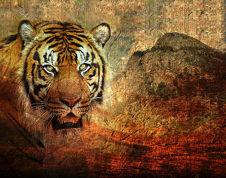 Siberian Tiger by Cheryl Ann Quigley